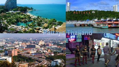 Photo of Things To Do In Pattaya City Places And Tourist Attractions