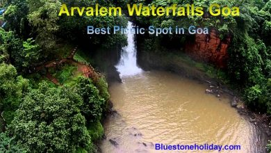 Photo of Arvalem Waterfalls Goa – Best Picnic Spot in Goa