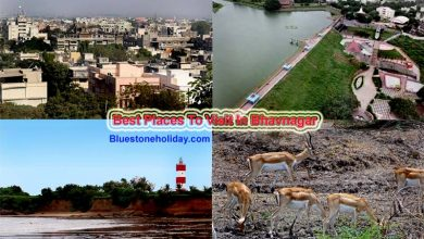 Photo of Places To Visit In Bhavnagar – Best Picnic & Tourist Spot
