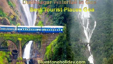 Photo of Dudhsagar Waterfall In Goa – Best Tourist Places Goa