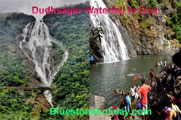 dudhsagar waterfall best time to visit, how to reach dudhsagar waterfalls, dudhsagar waterfalls in goa, goa to dudhsagar waterfalls, dudhsagar falls in goa, dudhsagar fall, dudhsagar falls, dudhsagar waterfall, dudhsagar falls to goa, dudhsagar falls goa, dudhsagar falls timings, dudhsagar falls how to reach, how to reach dudhsagar falls from goa, dudhsagar waterfall location, dudhsagar falls trip, dudhsagar falls images, dudhsagar waterfall how to reach, where is dudhsagar waterfall, dudhsagar waterfall images, dudhsagar waterfall from goa, dudhsagar waterfall timing, where is dudhsagar waterfall located, dudhsagar waterfall in which state, dudhsagar waterfall best time to visit,