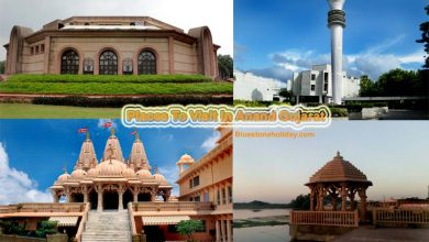 Photo of Places To Visit In Anand Gujarat & Tourist Places