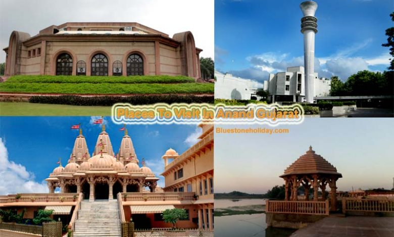 places to visit in anand, places to visit near anand, picnic place in gujarat, picnic spot in gujarat, picnic place near anand, tourist places in anand, tourist places near anand gujarat, tourist places in anand gujarat, tourist places near anand, places to visit near anand gujarat, top things to do in anand, anand city, anand gujarat, anand city photo,