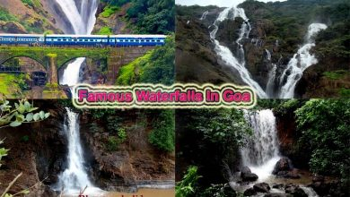 Photo of Waterfalls In Goa To Visit Tourist Spot In Goa