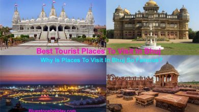 Photo of Places To Visit In Bhuj – Best Tourist Visiting Places