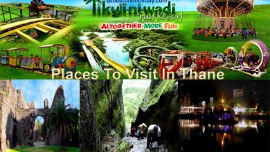 Photo of Places To Visit In Thane – Picnic Spot Near Thane