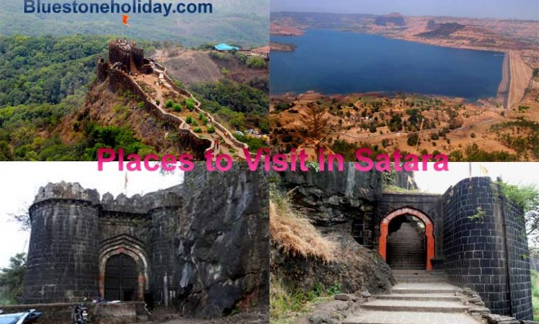 places to visit in satara, places to visit near satara, tourist places in satara, tourist places near satara, satara tourist places, wai satara, places to visit satara, places to visit in satara in monsoon, tourist spots in satara, satara tourist places, satara visiting places, satara places to visit, places to visit in satara in monsoon, picnic spot in satara, picnic spot near satara, images of satara, satara images, places to visit in wai satara, thoseghar satara, places to visit near satara in rainy season, places to visit near karad, places to visit near kas pathar, places to visit near sajjangad, kaas plateau satara,